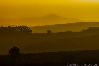 a-golden-hour-in-the-overberg
