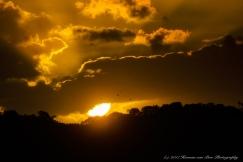 agulhas-national-park-21feb17-1