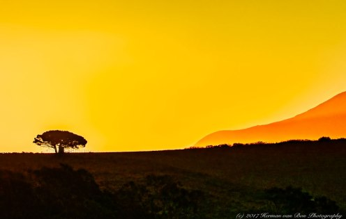 Sunset at Tuinplaas