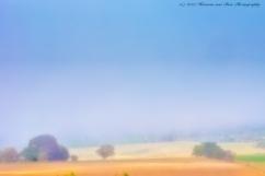 misty-landscape-1