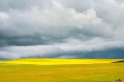 landscape-minimalism16aug17-2