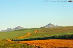 landscape9aug17-1