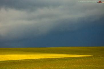 landscape-minimalism16aug17