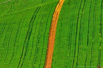 landscape-silo-road-21sept17-3