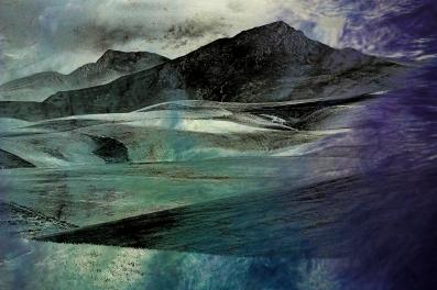 Experimental landscape